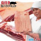 皮付き豚バラブロック4.2kg冷凍手にはいらない希少 3枚肉 角煮や東坡肉 サムギョプサル 国産に負けない味わい ばら肉 ベーコン
