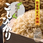 コシヒカリ 一等米玄米 30kg 石川県産 令和元年産