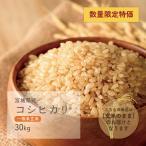 コシヒカリ 一等米玄米 30kg 宮城県産 令和2年産