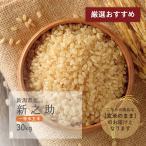 新米 新之助 一等米玄米 30kg 新潟県産 令和2年産