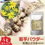 熊本産 きく糖 菊芋粉末パウダー 2袋(80g×2)セット DM便 送料無料  ( 国産 九州 熊本 菊芋 キクイモ )