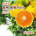 みかん 熊本産  訳あり サイズ混合 10kg   送料無料  九州 熊本 温州 早生 極早生 みかん 柑橘 ミカン こたつ 甘い