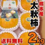 熊本産  太秋柿  1箱(約2kg) 送料無料 九州 熊本 柿 かき 太秋 たいしゅう