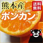 ポンカン 熊本産  5kg  送料無料   九州 熊本 ぽんかん みかん 柑橘