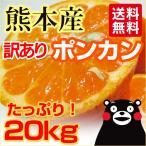 ポンカン 熊本産  訳あり 20kg ( 10kg×2箱 ) 送料無料   九州 熊本 ぽんかん みかん 柑橘