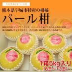 パール柑 文旦 熊本産 5kg (8〜12玉) 送料無料  贈答用 ギフト 贈り物 柑橘 みかん 九州 熊本