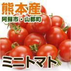 熊本産  ミニトマト 1パック ( 野菜セット と同梱で送料無料  九州 熊本 野菜 とまと ミニ プチ トマト 実野菜 )