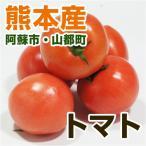 熊本県産 トマト 1パック  ( 野菜セット と同梱で送料無料 ) とまと 実野菜 九州 熊本