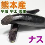 熊本産  ナス 1袋 ( 野菜セット と同梱で送料無料 ) 九州 野菜  茄子  なすび
