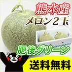 送料無料 熊本県産 メロン 「 肥後グリーン 」 2玉入  【 九州 熊本 果物 母の日 父の日 ギフト 】