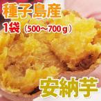 種子島産  安納芋 (S�Mサイズ) 1袋(500�700g入)  ( 野菜セット と同梱で送料無料 )  九州 野菜 鹿児島 あん納芋 あんのういも イモ
