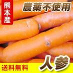 熊本産  人参  ( 農薬不使用 ・ サイズ混合 ・ 訳あり品 )  10キロ  送料無料  ( 九州 熊本 野菜 根菜 にんじん ニンジン キャロット )