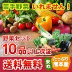 九州 熊本産  野菜セット 定番野菜 大盛 10品以上13品保証  送料無料  クール便   野菜 セット 盛り合わせ