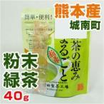 熊本県 城南町産 粉末緑茶 (野菜セットと同梱で送料無料)