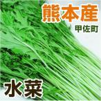 熊本・九州産  水菜  1袋  ( 野菜セット と同梱で送料無料 九州 熊本 野菜  ミズナ みずな 葉物 )