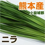 熊本産 ニラ 1束 ( 野菜セットと同梱で送料無料 九州 熊本 葉物 にら 韮 )