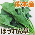 熊本産 ホウレン草 1袋  ( 野菜セット と同梱で送料無料 ) 九州 葉物 野菜 ほうれん草 緑黄色