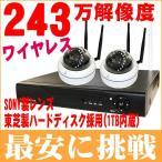 CT130-16G防犯カメラ2台セットCT130-16G監視カメラ243万画素 録画 無線NVR ワイヤレスIPカメラ1000GB対応 暗視対応遠隔