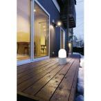 アイリスオーヤマ 乾電池式LEDセンサーライト/OSL-MN2M-WS 白色/スタンドタイプ丸型