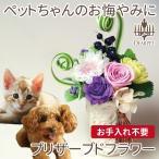 ペット お悔やみ 花 プリザーブドフラワー ギフト ペット 仏花 お供え 花器入り 縦型タイプ メッセージカード付 犬 猫