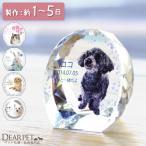 ペット位牌 セレクトクリスタル ミニサイズ ペットの位牌 犬 猫 メモリアル フレーム ガラス