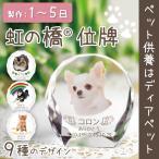 ペット位牌 セレクトクリスタル ラージサイズ ペットの位牌 犬 猫 メモリアル フレーム ガラス