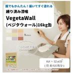 練り済み漆喰 Vegeta WALL ベジタウォール 16kg入り 届いてすぐ塗れる簡単しっくい
