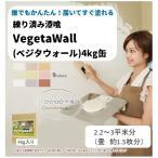 練り済み漆喰 Vegeta WALL ベジタウォール 4kg入り 届いてすぐ塗れる簡単しっくい