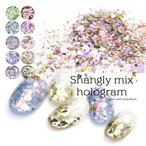 ネイルアート シャングリーmixホログラム 全10色 約1.5g タイプ7 ネイルツール ジェル レジン ホログラム グリッター ラメ オーロラ メタリック 乱切り
