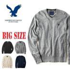 SALE 大きいサイズ メンズ アメリカンイーグル AMERICAN EAGLE Vネックセーター ワンポイント XL XXL XXXL