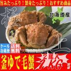 北海道産 毛ガニ 500g×2尾 1000g  1kg 送料無料 未冷凍 釜あげ ボイル かに 蟹 カニ