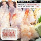 えび エビ 海老 新鮮お刺身用開き生エビ20枚 寿司 冷凍