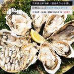かき カキ 牡蠣 広島県産ジャンボ生剥き牡蠣(かき)1kg/解凍後850g(20-40粒前後) 冷凍便送料無料 お年賀 年末年始 ごちそう ギフト