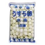 【水煮 100卵袋詰 1袋】天狗缶詰 国産 うずら卵 水煮