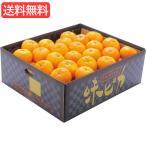 お歳暮 送料無料 特価 愛媛県産JAにしうわ 味ピカみかん(5kg) 旬のフルーツギフト   X__201009a544