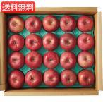 お歳暮 送料無料 特価 青森県産 サンふじりんご(5kg) 旬のフルーツギフト   L__201010a526