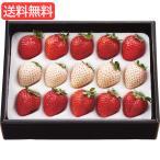 お歳暮 送料無料 特価 紅白いちご(計200g) 旬のフルーツギフト   L__201011a522