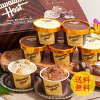 お中元 2020 送料無料 ハワイアンホースト マカデミアナッツ チョコアイス  ( 2種 計 7個 )メーカー直送 ybk-AH-HH