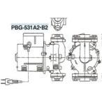 三相電機(SANSO) PBG-531A2 砲金製ラインポンプ 50Hz 単相100V メカニカルシールタイプ
