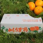 【送料無料】会津みしらず柿 【 3Lサイズ 5kg 】  約17玉約5キロ