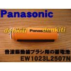 ナショナル パナソニック 音波振動ハブラシ EW1023 EW1024 用 蓄電池 (1台の交換に必要な分だけセットになっています。) NationalPanasonic EW1023L2507N