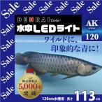 アロワナライト水中LED 120cm水槽 金龍 DENRAI113K -型番A010-