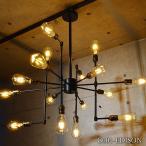こんなデザイン見たことない16灯の LED シャンデリア ペンダント ライト 天井 照明 シーリング 店舗 吊り下げ 照明 かわいい おしゃれ 豪華 C001-EDISON