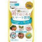 【納期目安:2週間】マルマン E465946H マルマン Let's菌活 菌ではじめるスマート習慣 30粒入