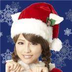 ds-684877 【クリスマスコスプレ 衣装】ホワイトキャットサンタ帽 4571142469582 (ds684877)