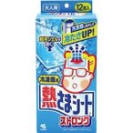 ds-2300177 (まとめ)小林製薬 冷凍庫用 熱さまシートストロング 大人用 1箱(12枚)【×10セット】 (ds2300177)