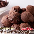 天然生活 SM00010658 サクサク生地にゴロっと濃厚チョコチップ!!【お徳用】北海道小麦のチョコチップクッキー30個