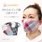 インド 綿 柄 2枚セット マスク 布 耳調整 メンズ レディース 洗える 立体 2枚組 風邪 予防 7個までメール便発送