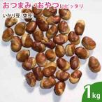 いかり豆(空豆) 1kg ナッツ 無添加
