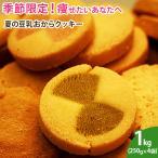 【送料無料】夏の豆乳おからクッキー